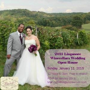 Annual Bridal Show  @ Linganore Winecellars  | Mount Airy | Maryland | United States