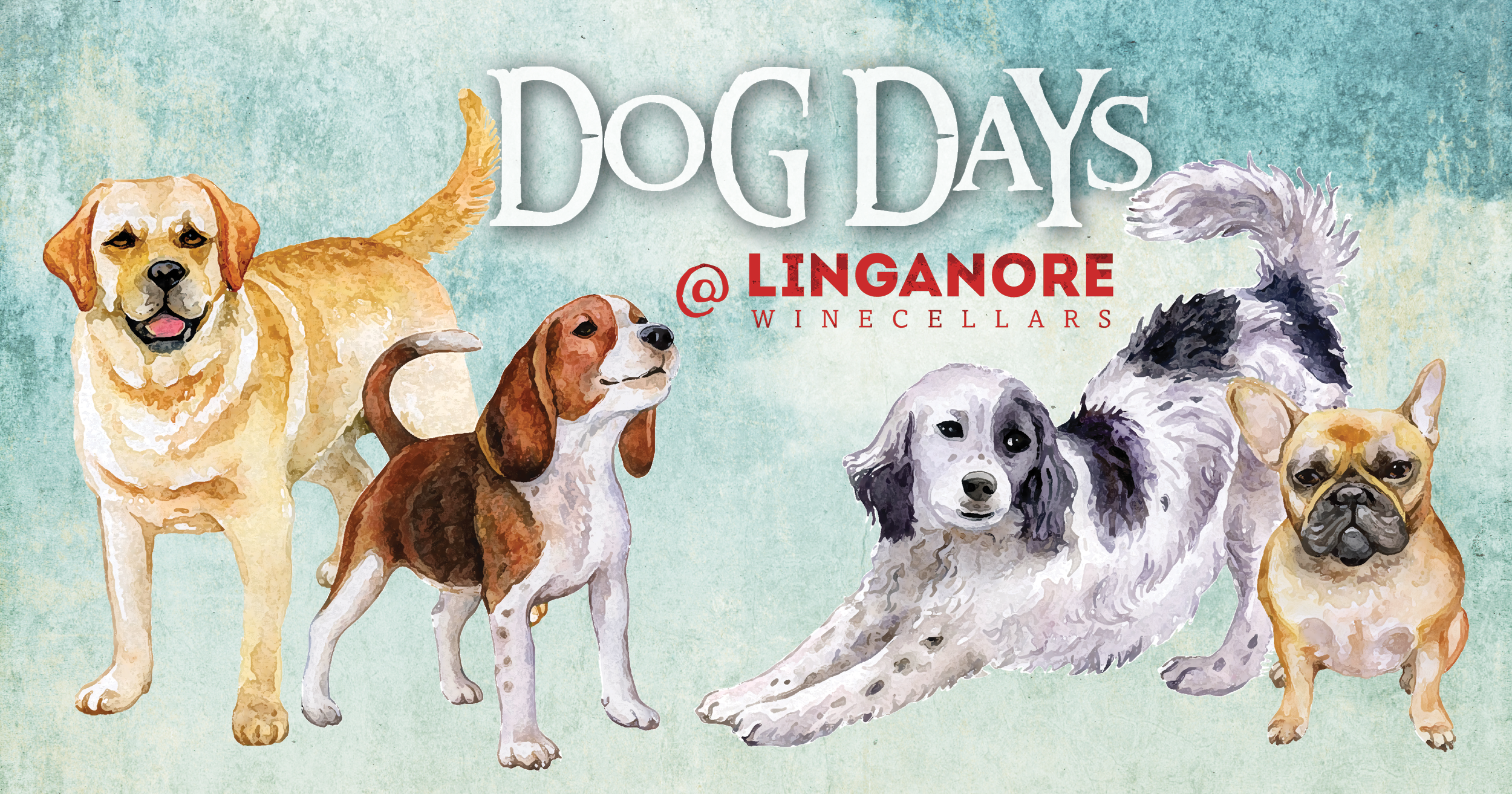 Dog Days at linganore bring your dogs to the winery