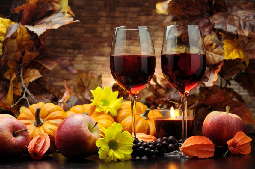 Red Wines for Fall- Vineyard Frederick MD